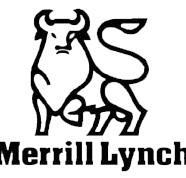 Breakwater Client: Merill Lynch